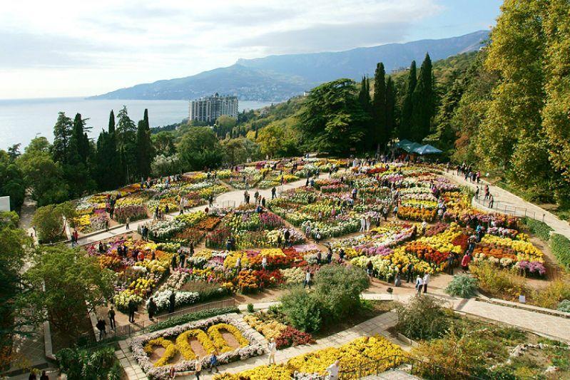«Бал хризантем» в Никитском ботаническом саду