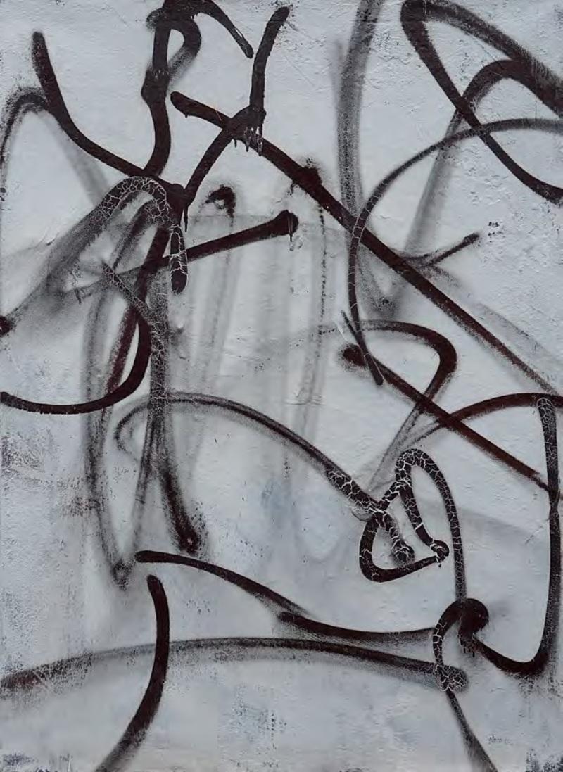 Мисак Чолокян «Чёрное и белое»