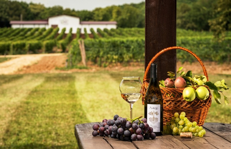 Gunko Winery