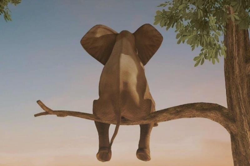 Слон и Птица