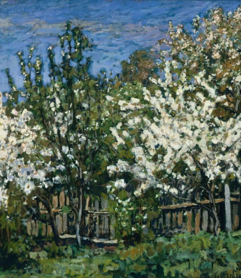 П. И. Петровичев. «Цветущие вишни». 1911 г.